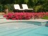 zwembad onderhouden Lubbeek